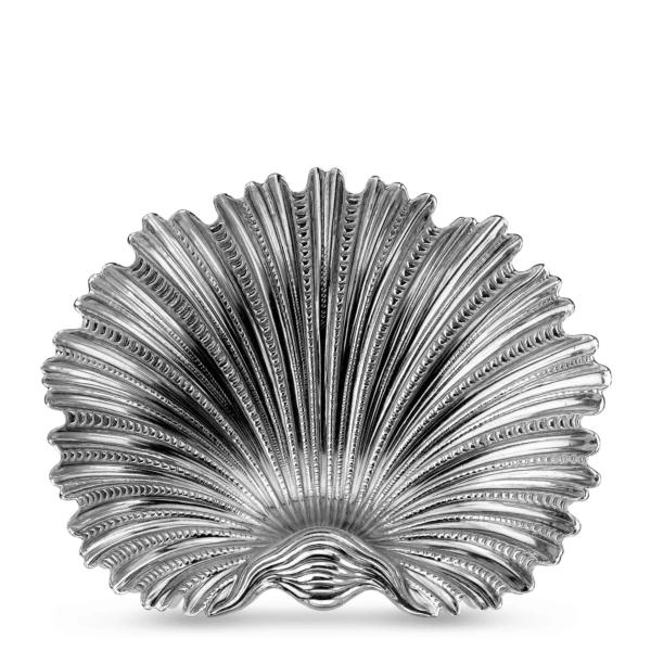 Arca shell